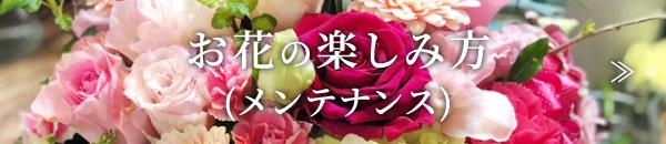 お花の楽しみ方